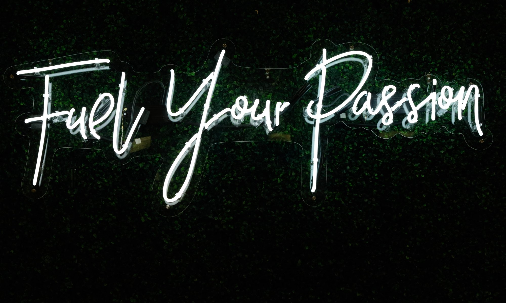 "A neon sign stating ""fuel your passion"""