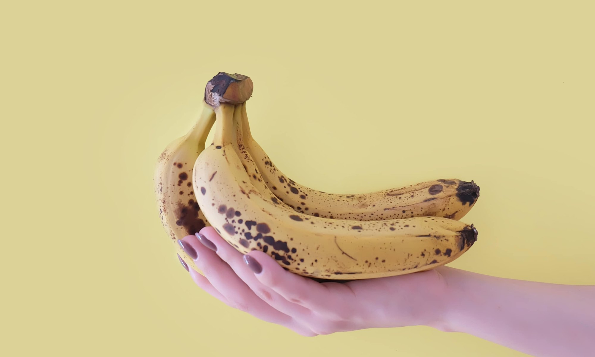 Woman's hand holding healthy bananas