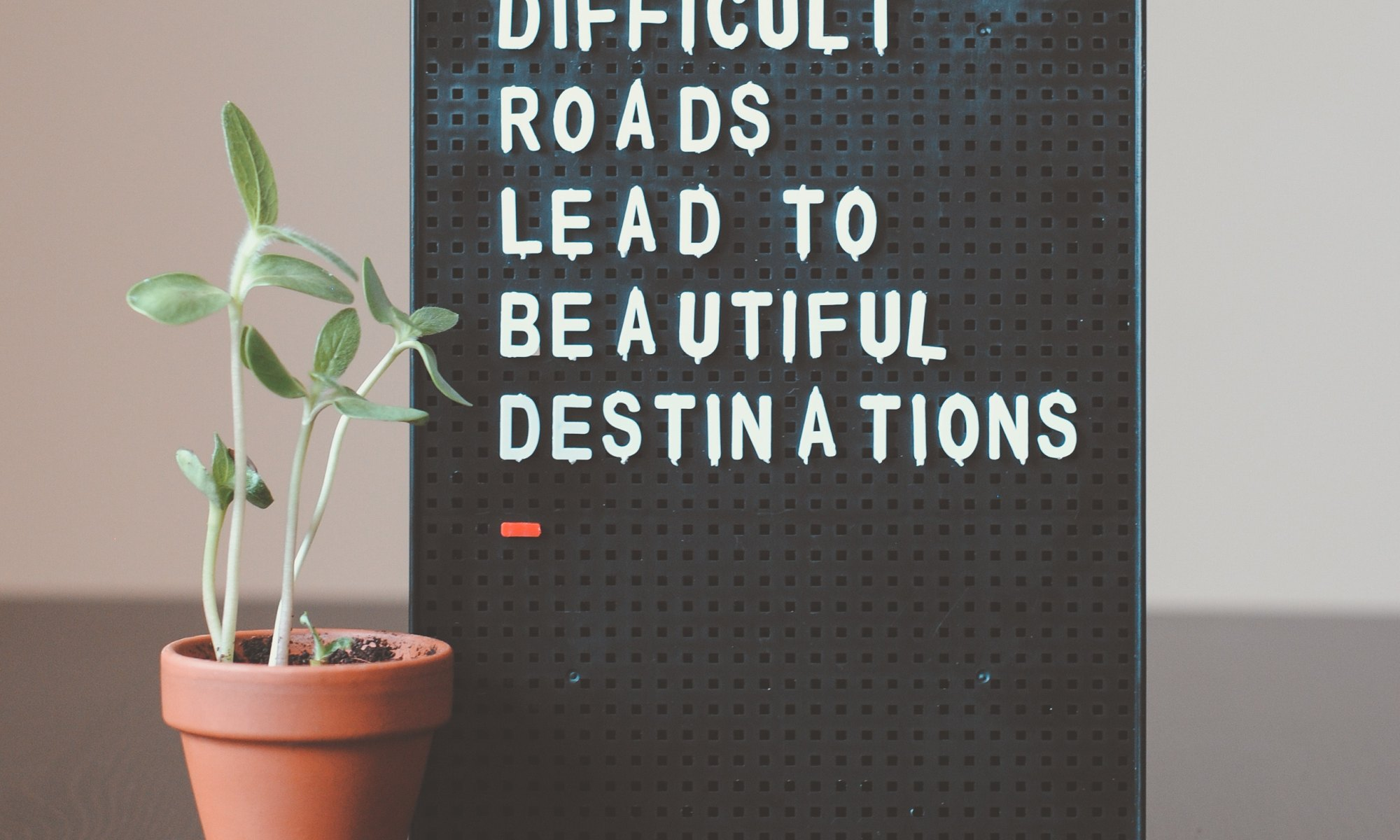 "Wall decor next to house plant stating ""difficult roads lead to beautiful destinations"""