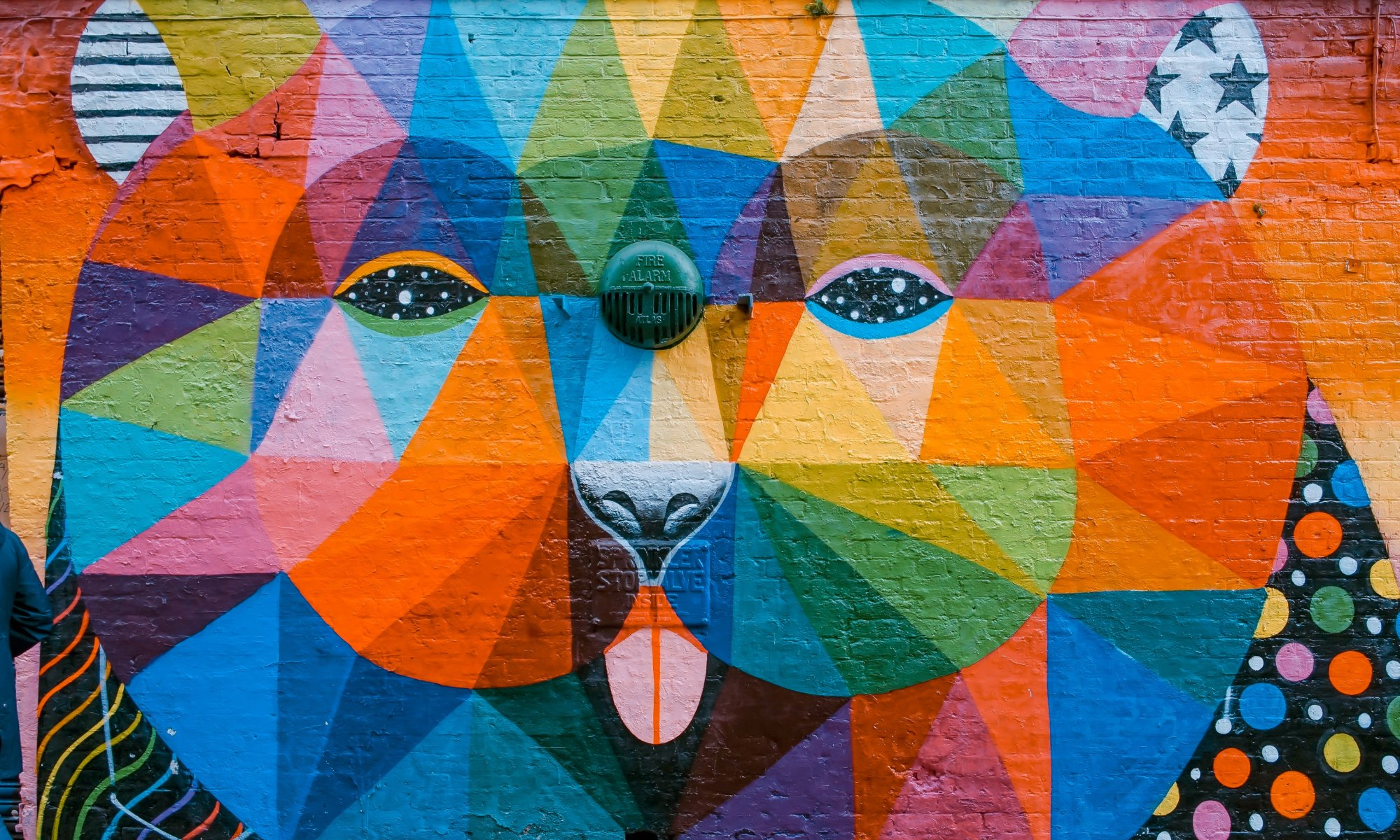 Colorful animal abstract wall painting