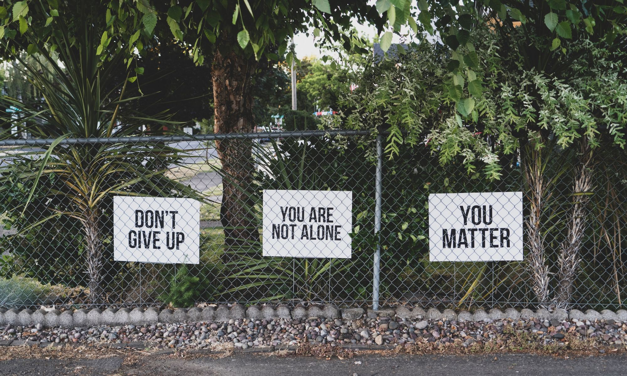 Positive motivating mental health signs posted on fence along trees