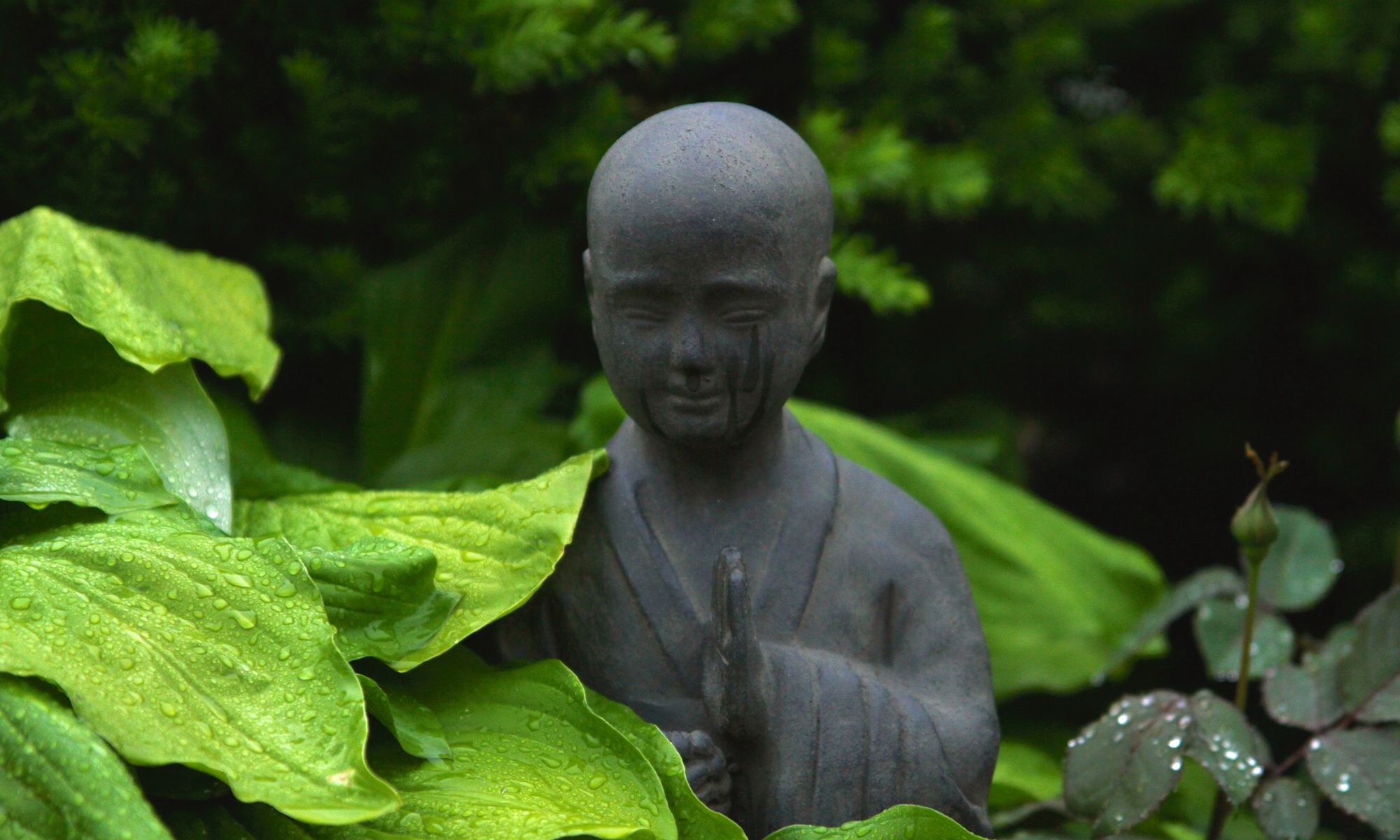Crying monk statue surrounded by outdoor plants