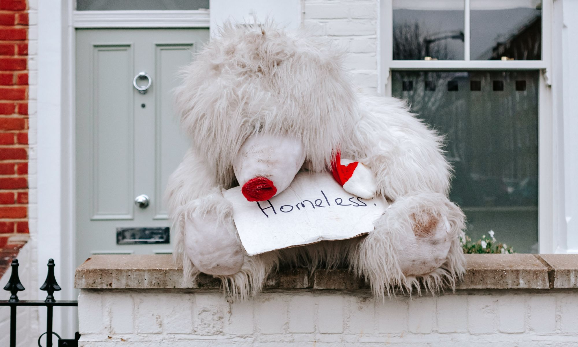 "White toy bear holding ""homeless"" sign in front of apartment"