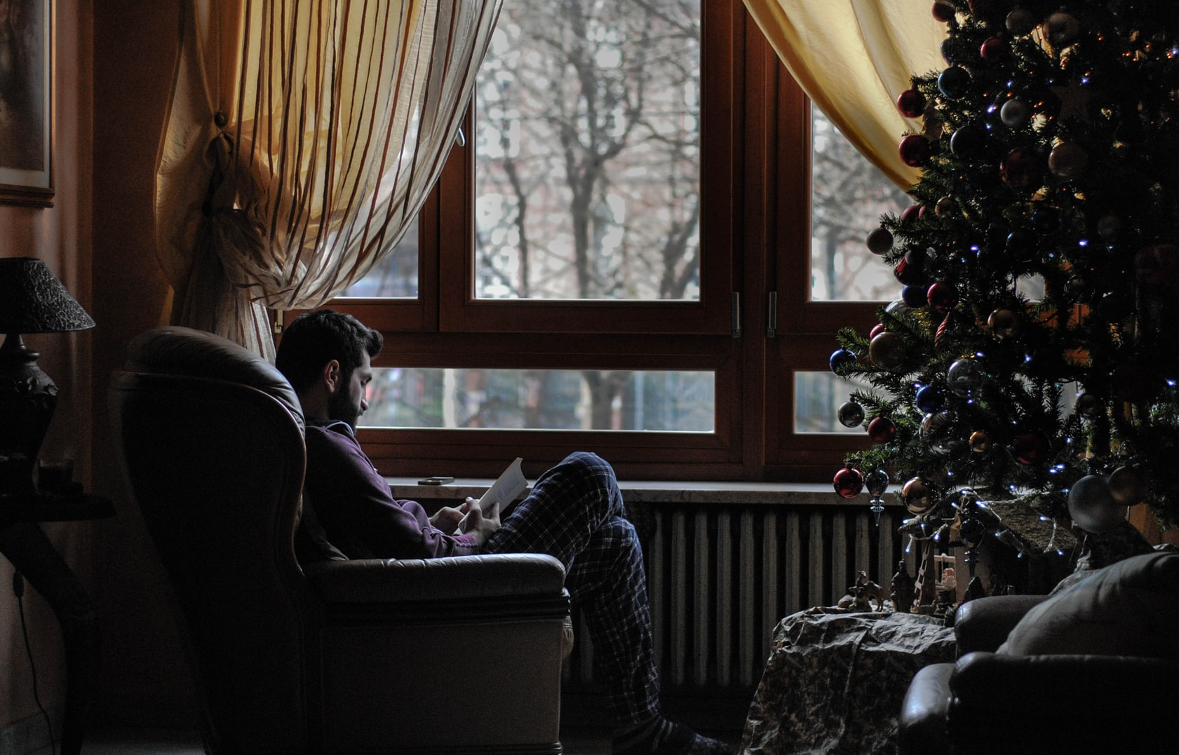 Man reading a book on sofa chair near Christmas tree
