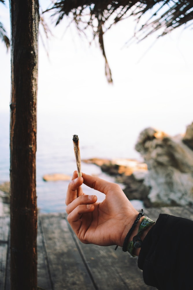 Person holding marijuana joint in front of tree and body of water