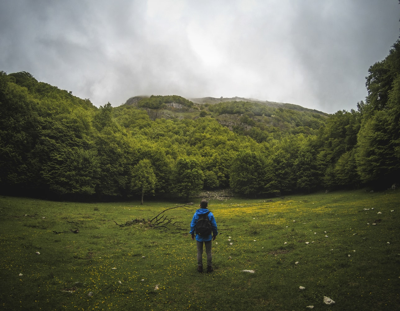 Panoramic photography of man in blue jacket with backpack standing on grass in front of trees