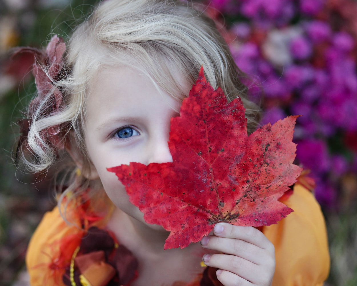 Blonde girl with blue eyes holding red maple leaf