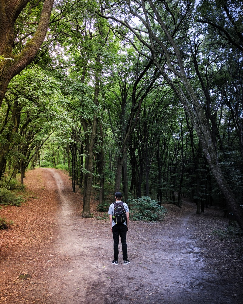 Man with backpack standing between two paths in the middle of woods